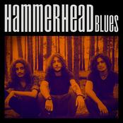 Hammerhead Blues - EP