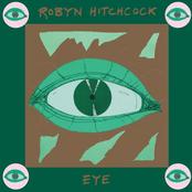 Robyn Hitchcock: Eye