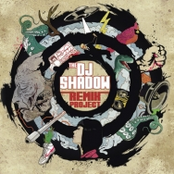The DJ Shadow Remix Project