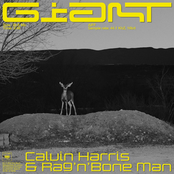 Calvin Harris - Giant (with Rag'n'Bone Man)