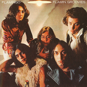 Flamin Groovies: Flamingo