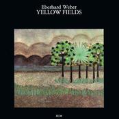 Yellow Fields