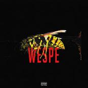 Wespe