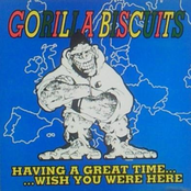 Gorilla Biscuits: Having A Great Time..Wish You Were Here