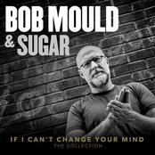 If I Can't Change Your Mind by Sugar