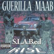 Rise: S.L.A.B.ed