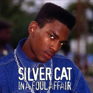 Avatar for Silver Cat