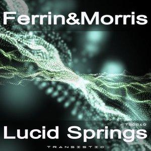 Lucid Springs