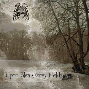 Upon Bleak Grey Fields