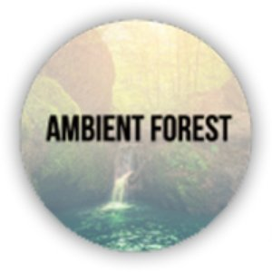 Avatar for Ambient Forest