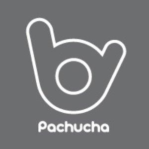Avatar for pachucha