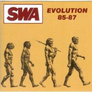 Evolution 85-87
