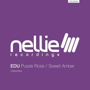 Purple Rose / Sweet Amber