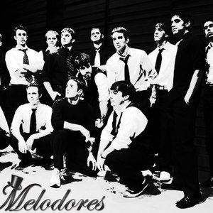 Avatar for Vanderbilt Melodores