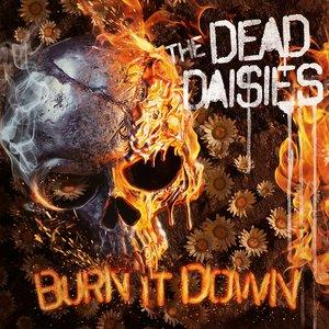 Burn It Down [Explicit]