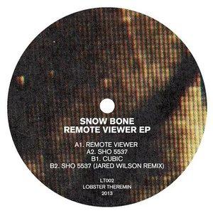 Remote Viewer EP