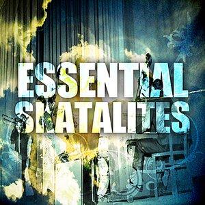 Essential Skatalites