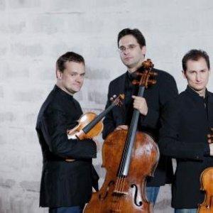 Avatar for Trio Zimmermann