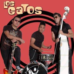 Avatar for Los Gatos rockabilly