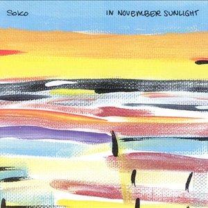 Immagine per 'In November Sunlight'