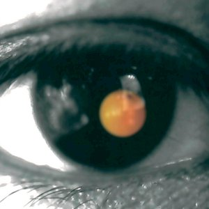 Black Tangerine