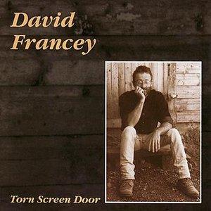 Torn Screen Door
