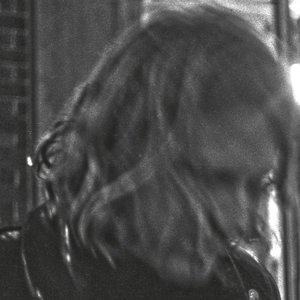 Ty Segall (2017)
