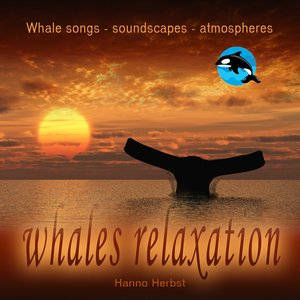 Whales relaxation