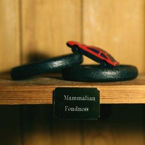 Mammalian Fondness