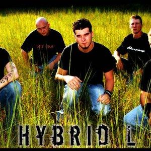 Avatar for Hybrid L