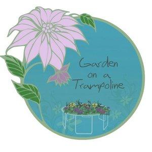 Avatar for Garden On A Trampoline