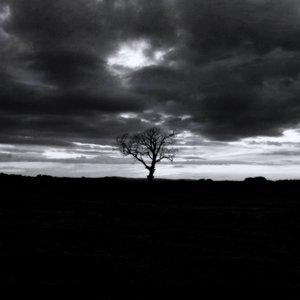 Under Stolen Skies