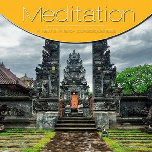 Meditation Vol. Grey