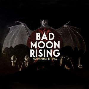 Bad Moon Rising (Cover) [feat. Peter Dreimanis]