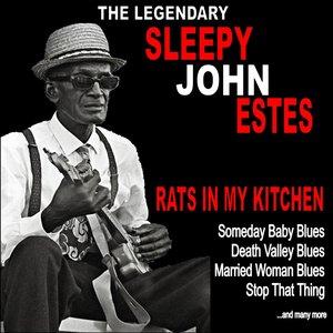 Rats in My Kitchen :The Legendary Sleepy John Estes
