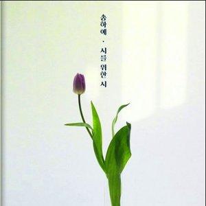시를 잊은 그대에게 OST Part.12