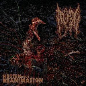 Rotten Body Reanimation