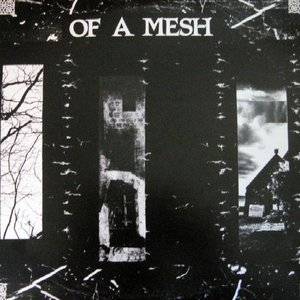 Of A Mesh