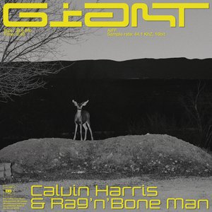 Avatar for Calvin Harris, Rag'n'Bone Man