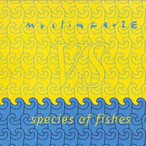 Muslimgauze vs Species of Fishes