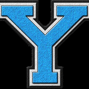 Avatar for The Yodees