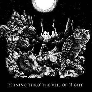 Shining thro' the Veil of Night