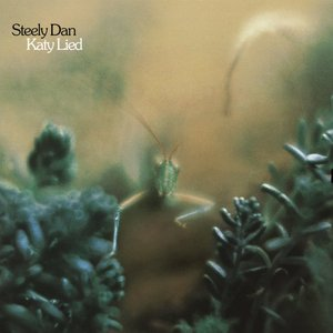 Image for 'Katy Lied'