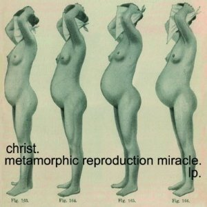 Metamorphic reproduction miracle