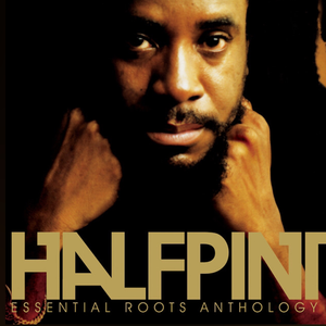 Essential Roots Anthology