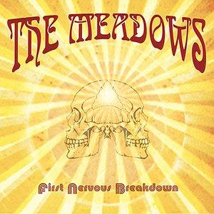 First Nervous Breakdown