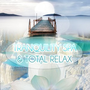 Avatar for Tranquility Spa Universe