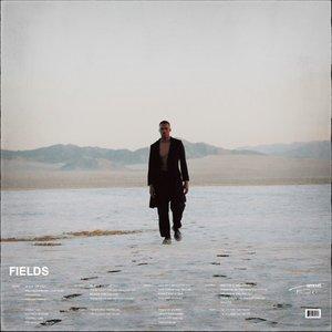 Fields - Single