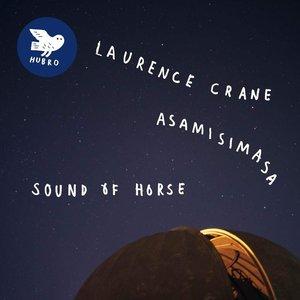 Sound Of Horse