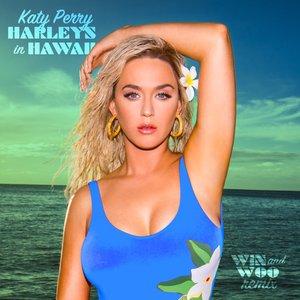 Harleys In Hawaii (Win and Woo Remix) - Single